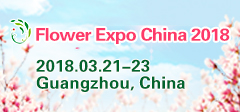 flowerexpochina banner240X112